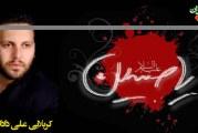 کربلایی علی داداشی-عزاداری محرم ۹۲ (هیئت زینبیه مراغه)
