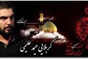 حمیدعلیمی-تحویلدار-عزاداری وفات حضرت ام البنین (س) ۱۳۹۳