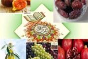 """کدام """"میوه"""" ها نامشان در """"قرآن"""" آمده است؟"""