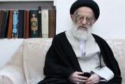 تمایل آیت الله شبیری زنجانی برای شرکت در پیاده روی اربعین