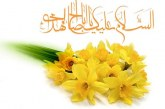 گفتار اهل بیت علیهم السلام درباره امامت مهدى (عج)